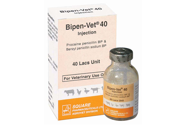 Bipen-Vet<sup>®</sup> Injection